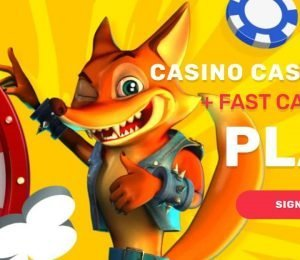 Crazy Fox banner-min