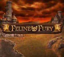 Feline Fury 320 x 320