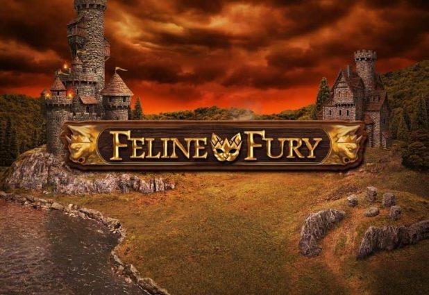 Feline Fury 908 x 624-min