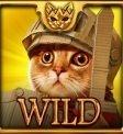 Feline Wilds