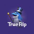 TrueFlip 320 x 320