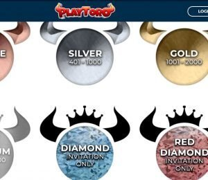 playtoro casino vip levels-min