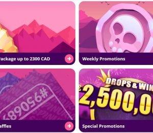 spinurai casino promotions-min